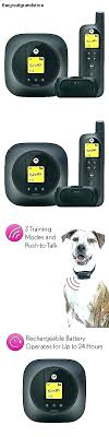 Remote Control Electric Dog Collar Training Instructions Battery Yard Trainer Petsafe Wireless Fence Replacement Pet Containment System Parts Add Free Living Download Decoration