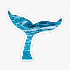 Whale Tail Stickers Redbubble