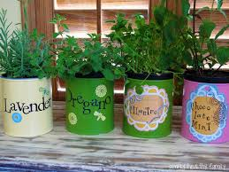 30 herb garden ideas to spice up your