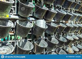 Many Small Empty Black Plastic Pots Were Hung On A Metal Fence Stock Photo Image Of Blank Bucket 173854720