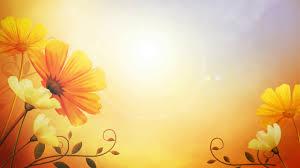 خلفية صفراء اجمل الخلفيات الملونة حبيبي