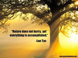 """quotes for healing """"nature does not hurry yet everything is"""