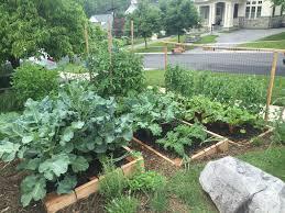 plant a front yard veggie garden