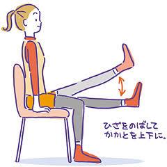 Image result for 膝の上げ下げ