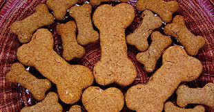 homemade dog treats 10 recipes they ll