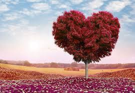 خلفيات رومانسية خقق احدث خلفيات الحب تجنن احلى خلفيات2020 خلفيات