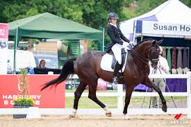 Great result for Wendi at Hartpury – NZ Horse & Pony