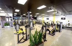 flex fitness hastings cbd everything