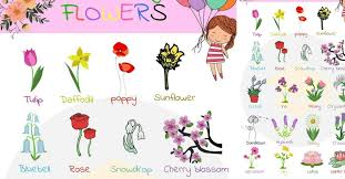 flowers names useful list of flowers