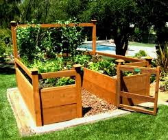 Sumptuous Design Ideas Elevated Garden Bed Plans Absorbing Beds On Legs Fun Waist High Raised Elevated Gardening Diy Raised Garden Vegetable Garden Raised Beds