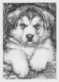 Husky Puppy By Ninsianna Dieren Tekenen Kleurplaten En Honden