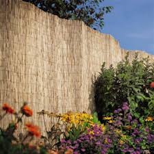 Buy Garden Reed Fencing 1 5 X 4m At Home Bargains
