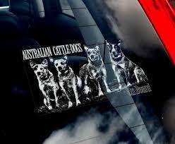 Cattle Dogs Car Window Sticker Acd Cattledog Cattledogs Blue Heeler Blue Heeler Heeler Dog Car
