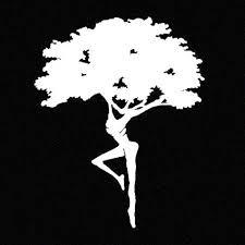 Fire Dancer Dreaming Tree Dave Matthews Band Cci Decal Vinyl Sticker Cars Ebay