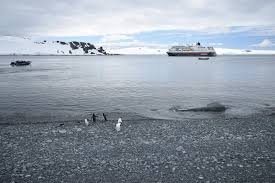 Our Honeymoon Cruise to Antarctica (16 Days in Patagonia and Antarctica) -  Part 1