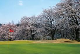 「春 ゴルフ場」の画像検索結果