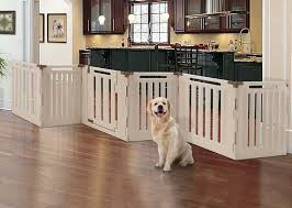 Difference Between Outdoor And Indoor Dog Fences Fast Dogs