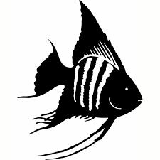 Hoosierdecal Cool Angelfish Vinyl Decal For Boats Cars Trucks Glass Metal Hoosierdecal