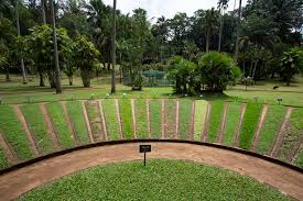 neatly maintained lawn with a