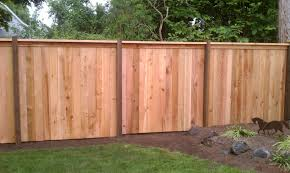 Cap And Bevel Fencing 1 Grade With 4 6 Pressure Treated Posts And 1 6 Western Red Cedar Boards Privacyfencepanels