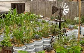 low tech ways to keep container gardens