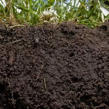 garden soil from clay silt or sand