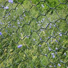 Living Fence Ideas Food Forage And Containing Livestock The Survival Gardener