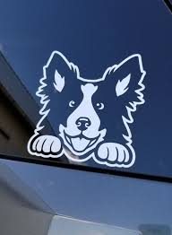 Border Collie Decal Border Collie Car Decal Sticker Border Etsy