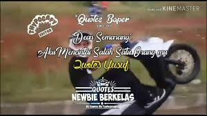 video quotes newbie berkelas