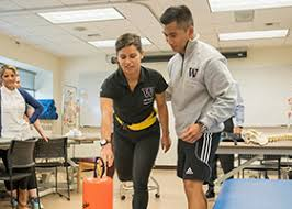 About | UW Doctor of Physical Therapy Degree - Seattle