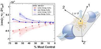 La violación de la paridad inducida por campos magnéticos en un ...