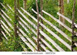 6 Fetching Garden Fence 7ft Ideas Fence Landscaping Rustic Fence Backyard Fences