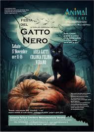 Ass.ne Animal Welfare onlus - Roma - Festa del Gatto Nero ...