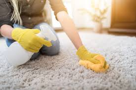 cleaning mildew from your carpet