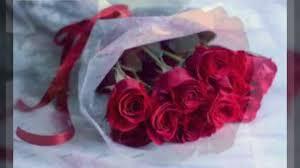 صور زهور جميلة Youtube