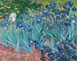 vincent van gogh paintings from saint