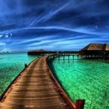 cool nature pictures goodnaturepics