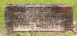 Mary Addie Burns (1893-1893) - Find A Grave Memorial
