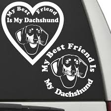 Dachshund My Best Friend Is My Dog Decal Sunburst Reflections