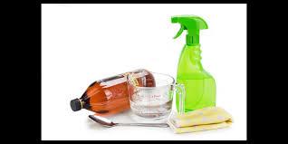 top 5 best flea sprays to 2020