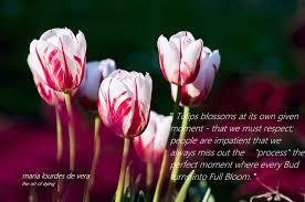 quote of the day filcatholic