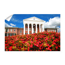 Ole Miss Rebels Lyceum College Wall Art