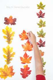 autumn leaf activities for preers