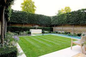 How To Design A Privacy Fence Or Screen For Your Yard