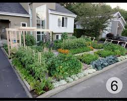 urban home garden with front yard