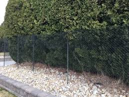 19 Privacy Fence Ideas Create A Backyard Retreat Learn Along With Me