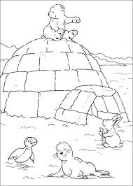 Print Kleine Ijsbeer Op Iglo Kleurplaat Knutselen Noordpool