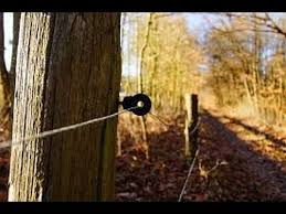 Locating And Repairing Electric Fence Faults Youtube