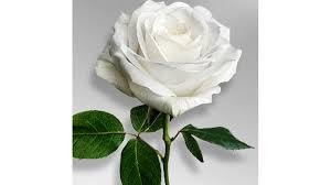 Charles Hansen Obituary - Irene, SD | Hansen Funeral Home