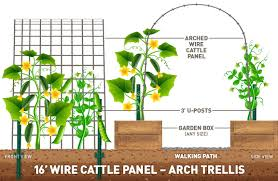 Grow A Vertical Garden Using Cattle Panels Ifa Country Stores